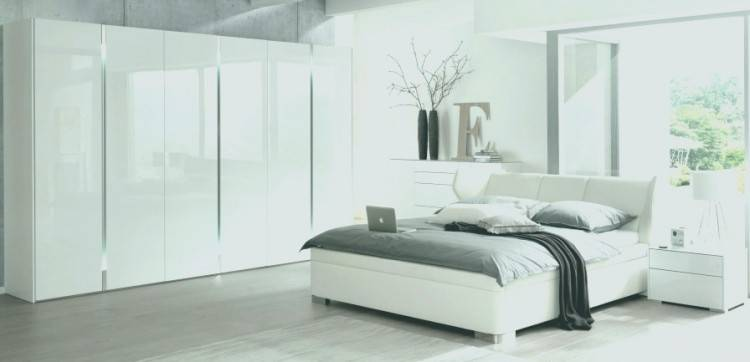 Delta Schlafzimmer Komplettset Kleiderschrank Bettanlage Wildeiche / Basaltgrau 1
